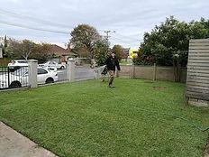 Topgarden Reday Lawn.jpg