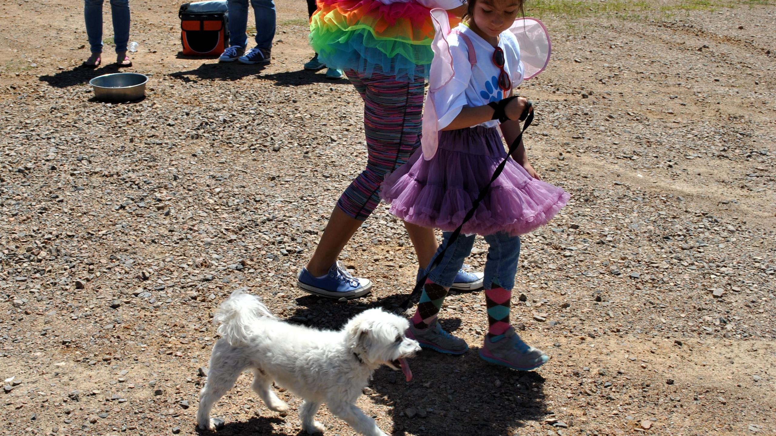 SPCA Walk for Animals 2016 (64)