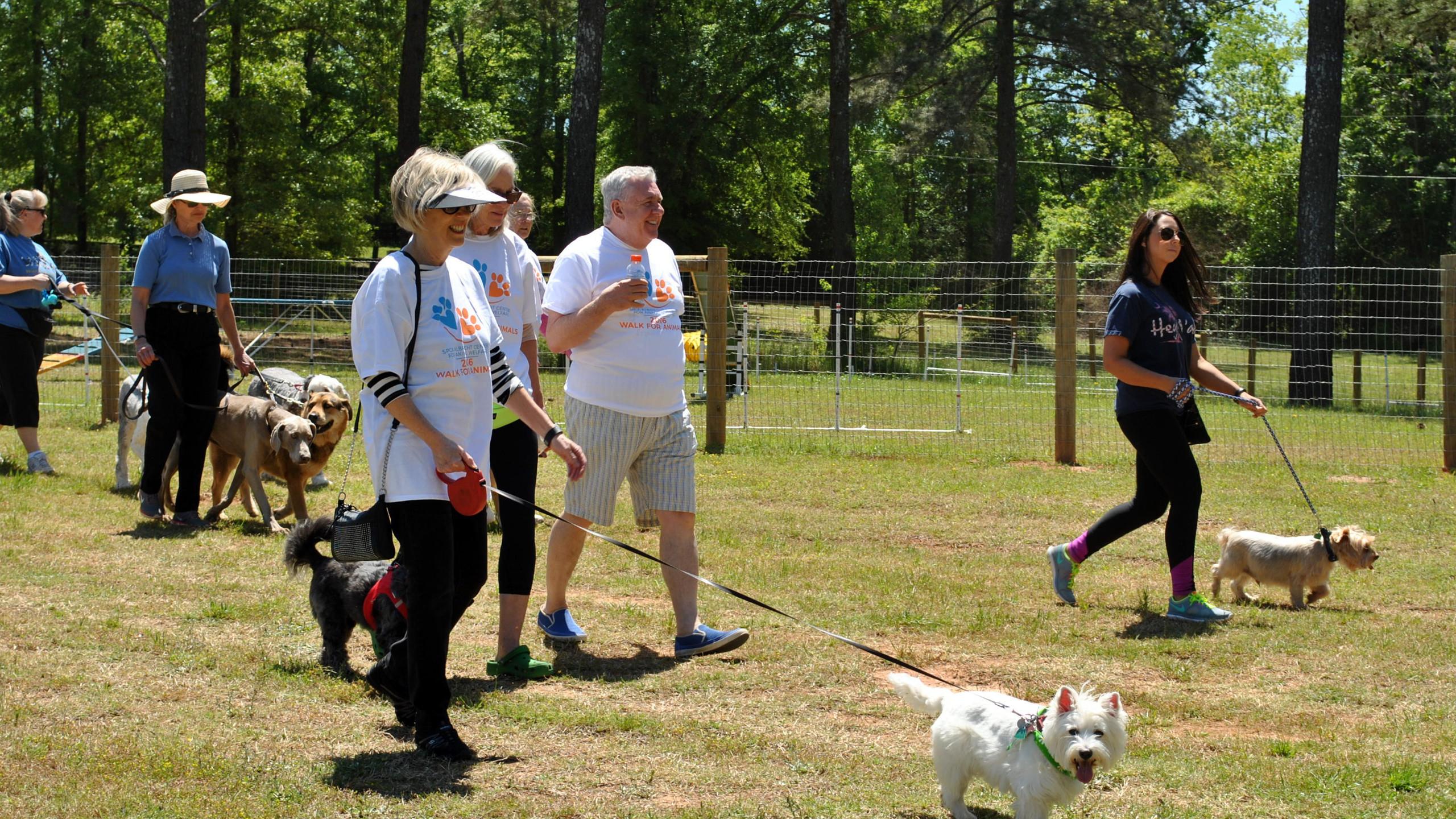 SPCA Walk for Animals 2016 (24)