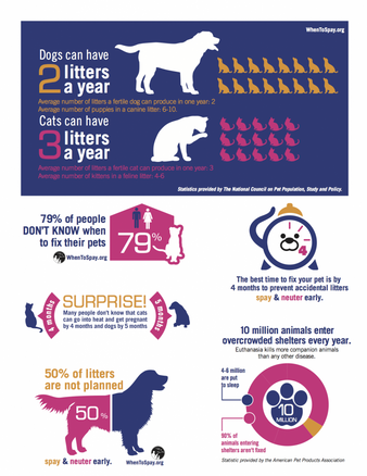 Have a Heart - Spay/Neuter Your Pets!