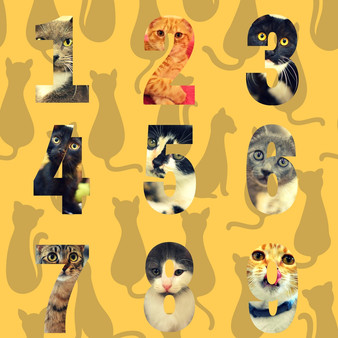 Counting Cats