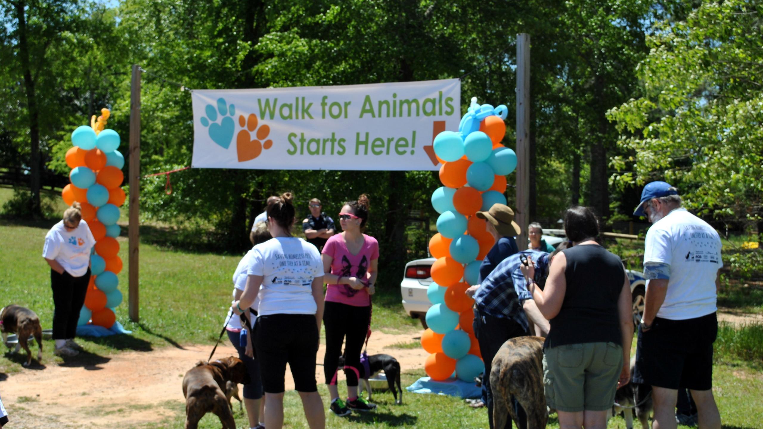 SPCA Walk for Animals 2016 (13)