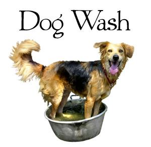 DogWash.jpg