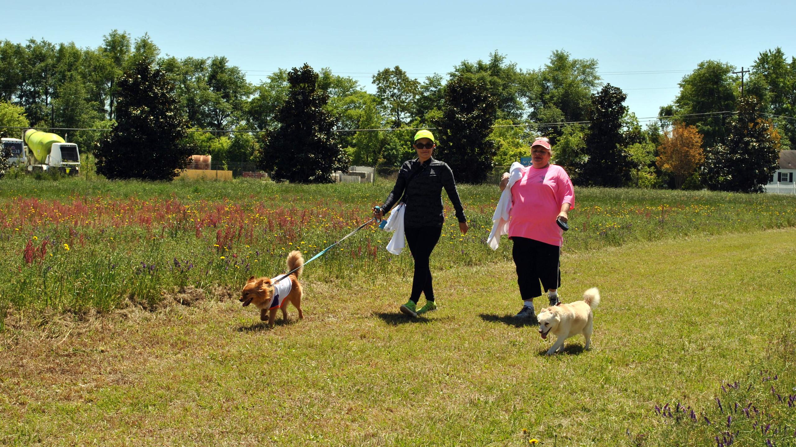 SPCA Walk for Animals 2016 (47)