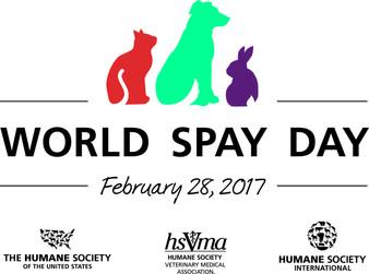 Celebrate World Spay Day Everyday