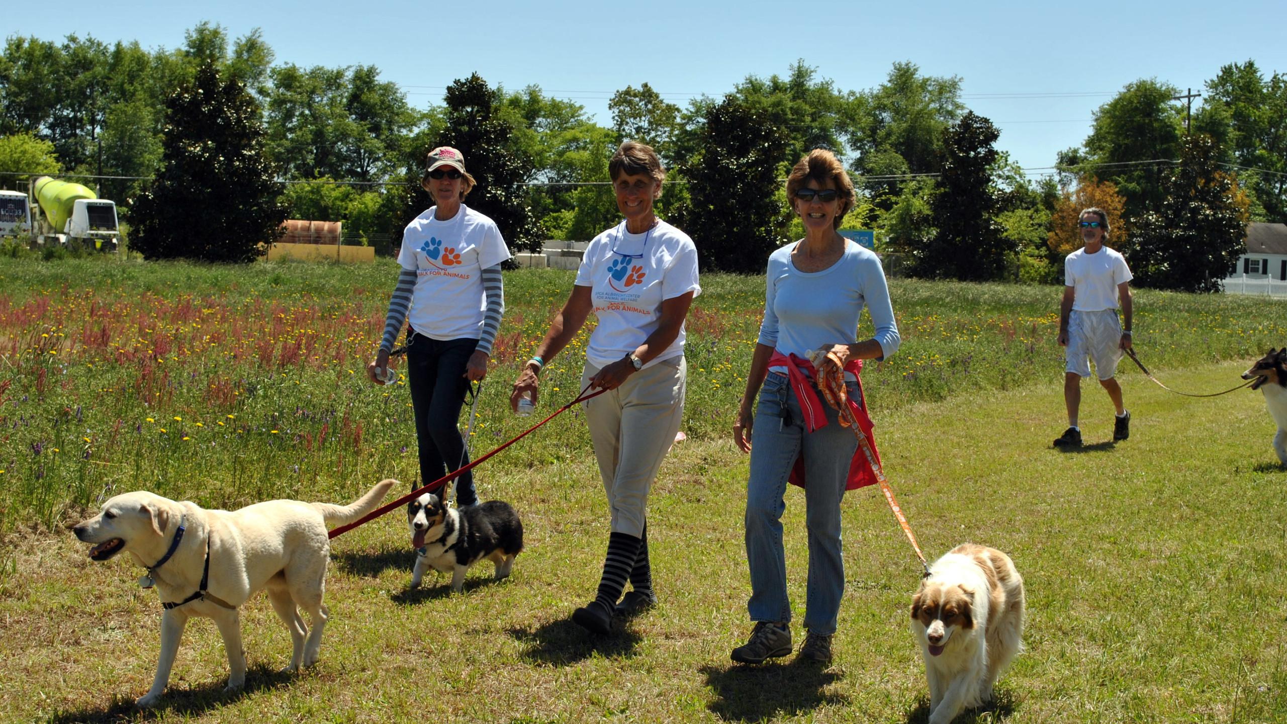 SPCA Walk for Animals 2016 (45)