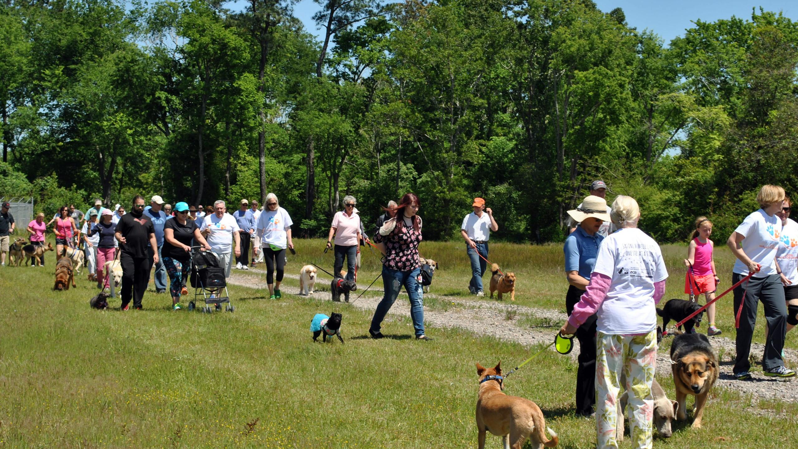SPCA Walk for Animals 2016 (59)