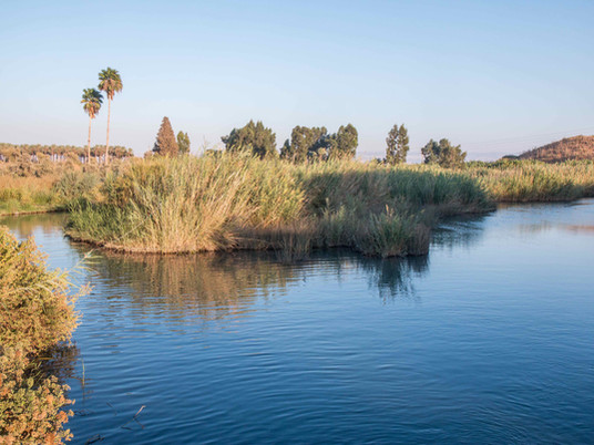 האם הקיבוצים בעמק בית שאן קראו ל-״נחל הקיבוצים״ על שמם?