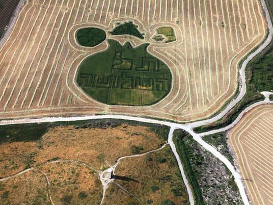ציורי שדה בקיבוץ ניר דוד