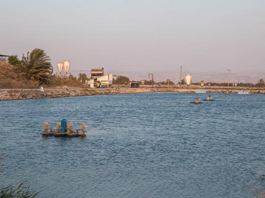מהם תנאי הגידול בבריכות הדגים של ניר דוד?