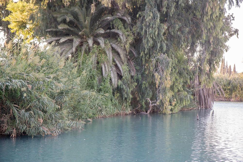 תמונה של הנחל