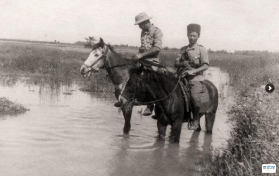 ניקוז ביצות בעמק בית שאן