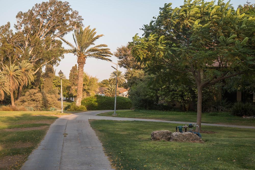 השטח בין הבתים בקיבוץ הוא שטח פרטי-פתוח.