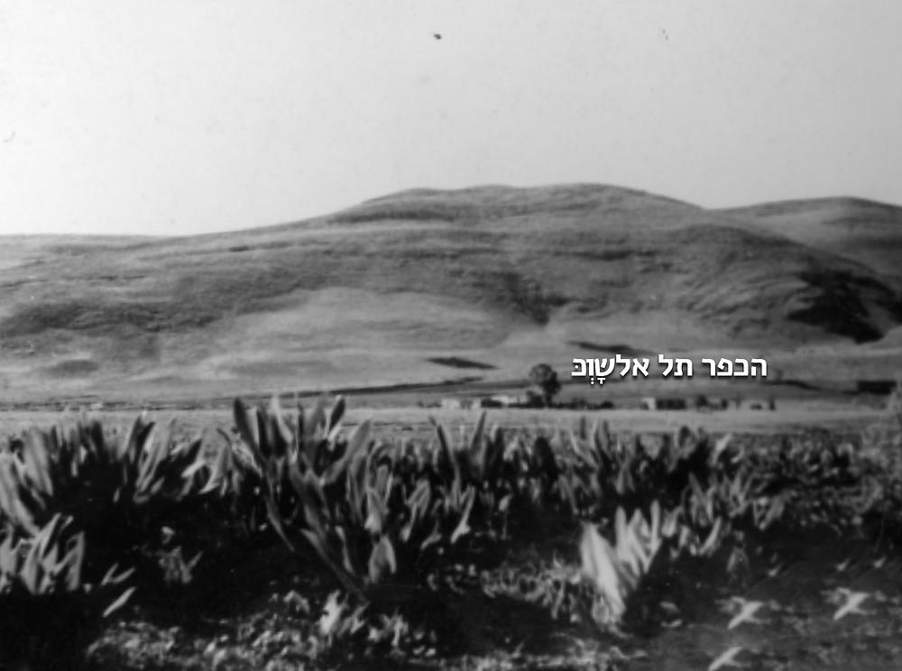 1938 - הכפר הערבי תל אלשָוְּכּ ממוקם מדרום לקיבוץ. בכפר בתים בודדים ל- 48 נפשות.