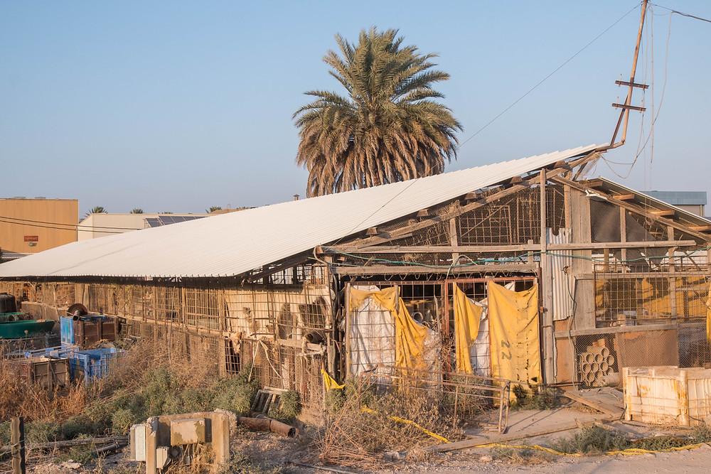 השטח שבבניה שימש בעבר ללולי תרנגולות שיצאו משימוש. הבניה החדשה לא פגעה בערכי טבע ונוף.