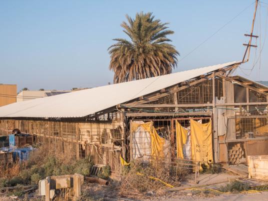 לקיבוץ ניר דוד תב״ע מאושרת לבניית שכונה חדשה. הבנייה לא הרסה את נוף הנחל