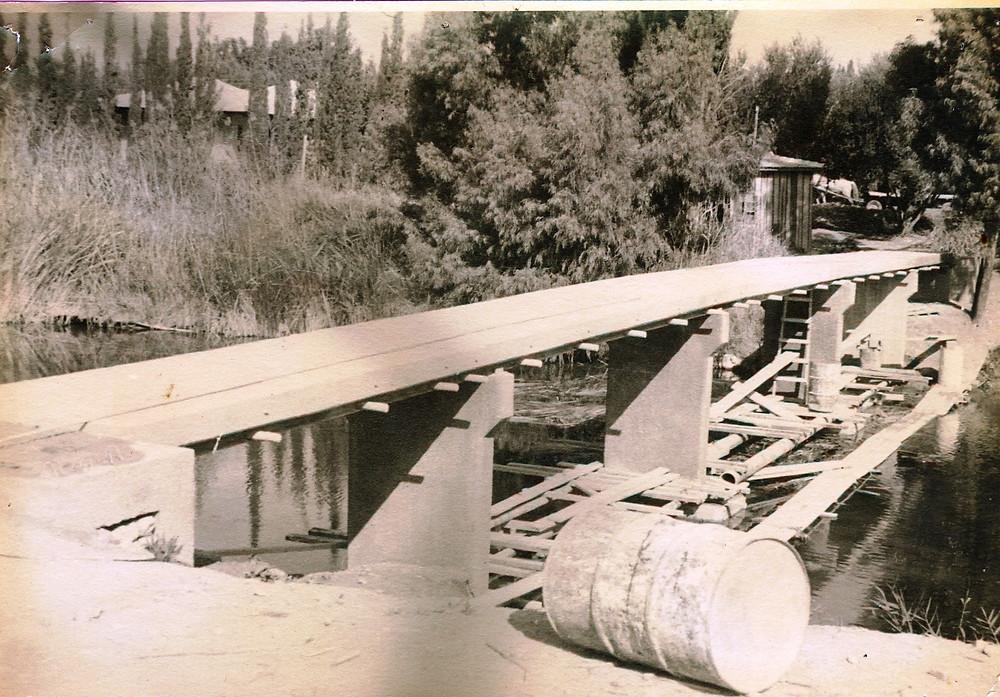 1950 - הגשר הכתום בהקמה. נבנה במימון בלעדי של חברי הקיבוץ.