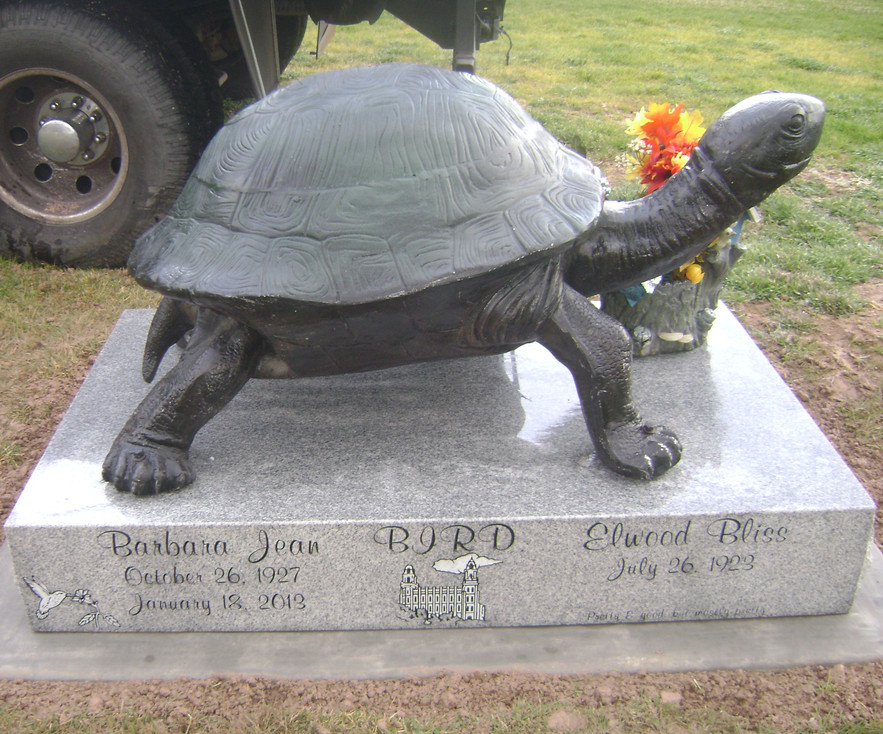 Double custom stone turtle light grey .j