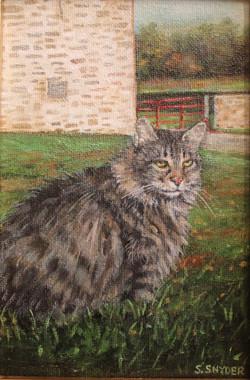 Cat at Meyer's Farm