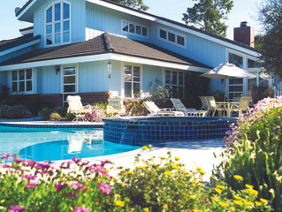 Ideas for pool perimeter landscaping