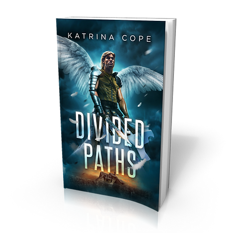 Divided Paths: Book 4: Angel (Afterlife)