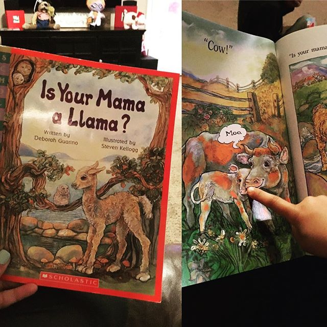 Ahhhh these lil cuties wanted me to read them stories tonight! #llama #isyourmommaallama #storytime