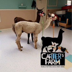 Farmer Sean teaches fun classes for schools. Bringing a different animal each week for the kiddos to