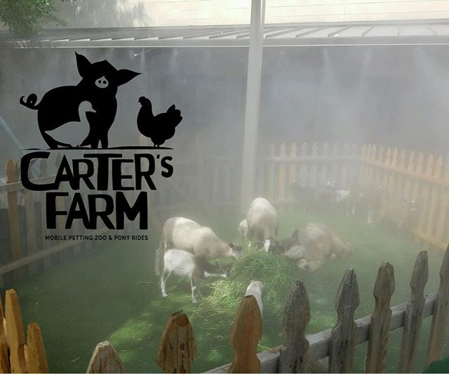 petting zoo and misters