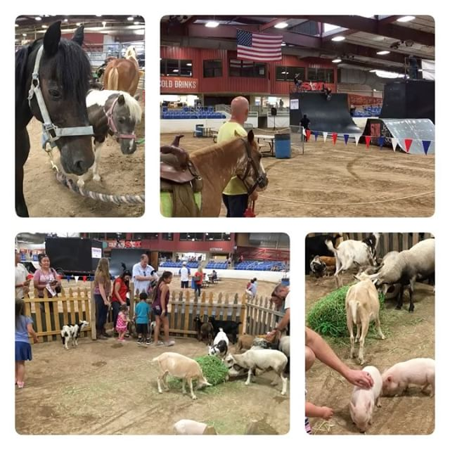 Petting zoo at a rodeo
