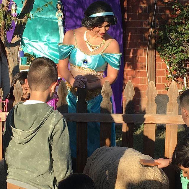 Jasmine and a petting zoo