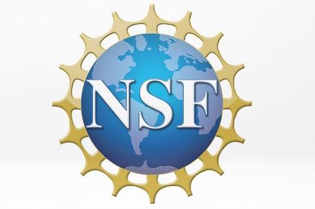 IKONA Receives $256,000 NSF SBIR Phase I Grant Award