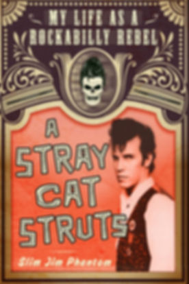 a-stray-cat-strut.jpg