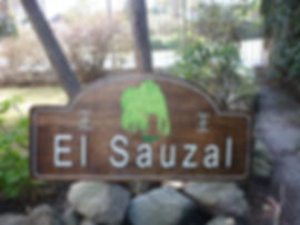 El Sauzal.JPG