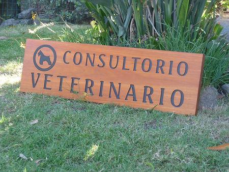 Consultorio Veterinario.JPG