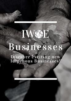 IWOE Businesses.png