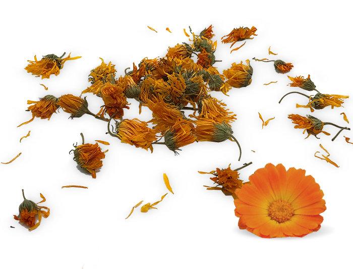 Ringelblume Kräutertee Poly Bio 50g