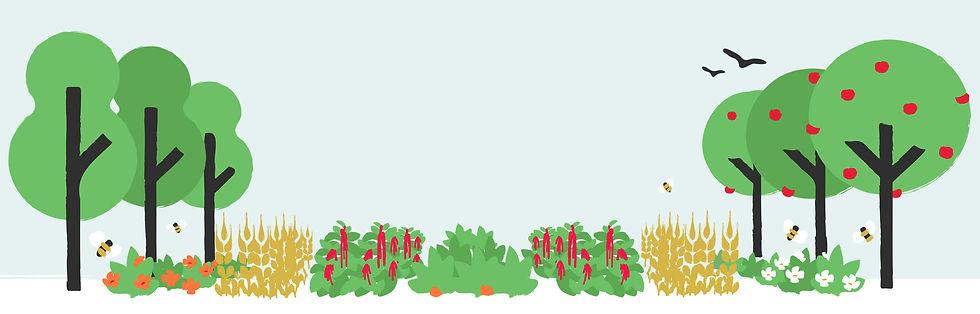 image-fullscreen-polykultur-1.2.jpg