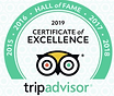 Tripp Advisor Award of Excellence