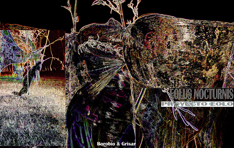 """""""Eolus Nocturnis"""": _   """"At nightfall, other creatures begin to emerge  in the Eolic reign... An astonishing unfolding  of their bodies occurs while they sleep:  transforming into """"others"""", they allow themselves  to be carried away by a different part of them,  which revives other personalities that hide from light... These  nocturnal versions are translucent, chameleonic  and suggestive beings that move sinuously  to the sound of the wind whistling."""""""