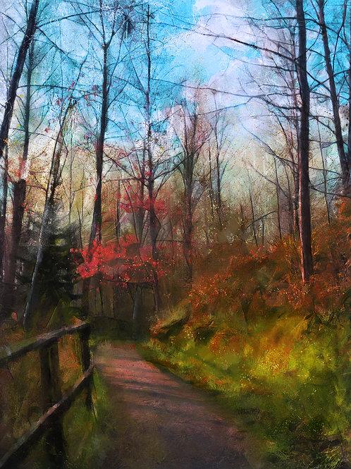 """""""Pathways - Dreams"""""""