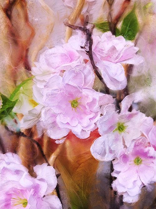 """""""Spring Pinks"""""""