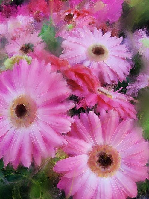 """""""Pinks Galore"""""""