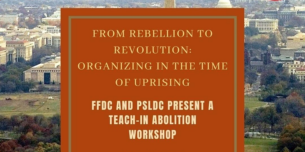 From Rebellion to Revolution: Organizing in a time of Uprising hosted by Freedom Fighters DC and PSL-DC