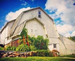 GOF summer barn.jpg
