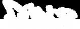 DanceArtAcademy_logo_ohne-rand-weiss.png