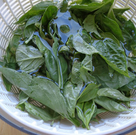 Quick and Easy Salad Greens
