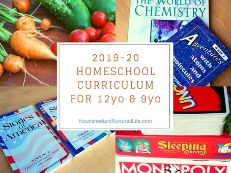 Our Homeschool Curriculum for 2019-20 (with a 12-year-old and a 9-year-old)