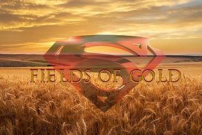 Fields of Gold Cover.jpg