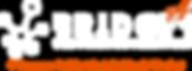 003_logo_bridges#4 (horizontal).png