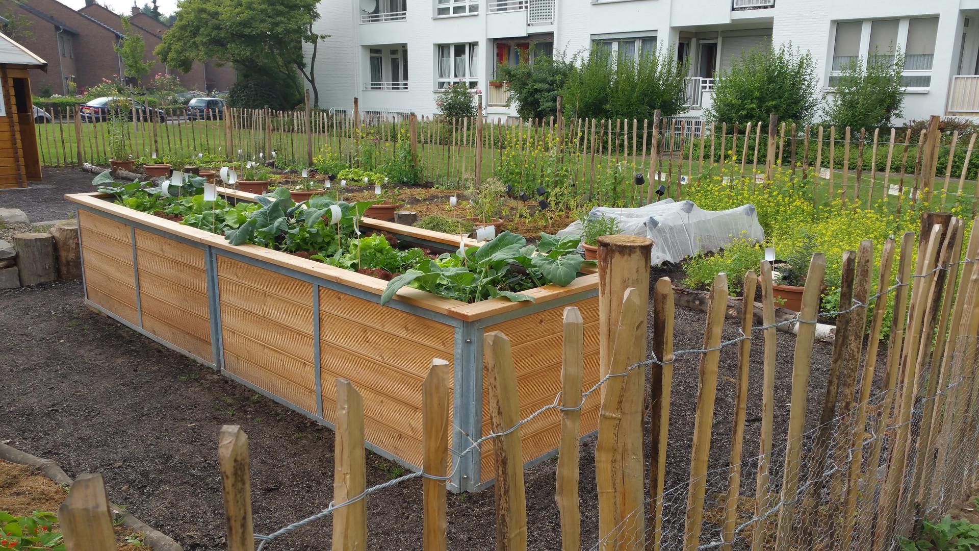 Wohnanlagen-Urban Gardening.jpg